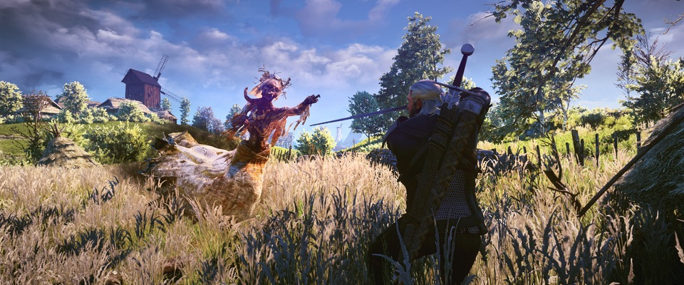 witcherview2