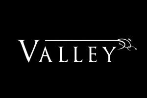 Blue Isle Studios' Valley To Release On August 24th